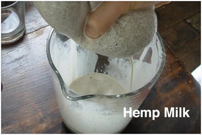 How to make Hemp Milk - Raw Recipe from Detox Trading