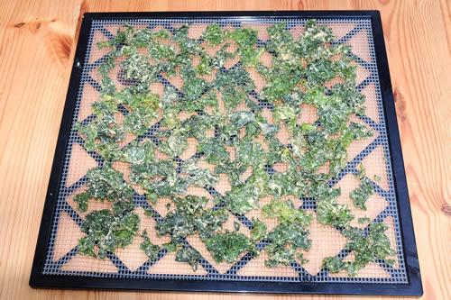 Home Made Kale Crisps