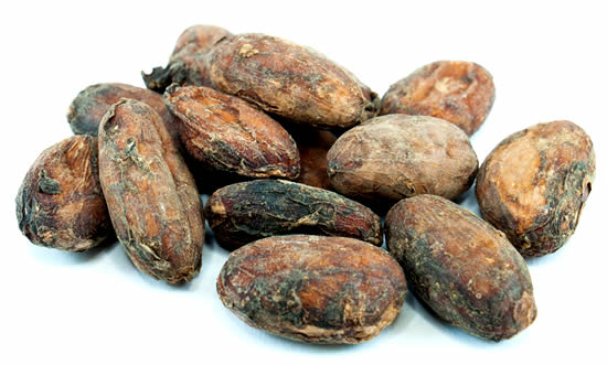 Raw Organic Cacao Beans Cocoa Beans Uk