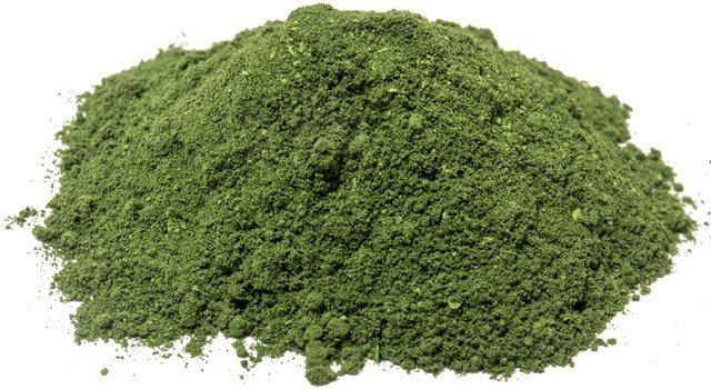 Marine Phytoplankton Powder