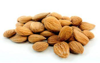 Organic-Raw-Sun-Dried-bitter-apricot-kernels
