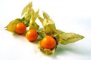 Golden Berry - Physalis