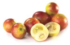 cammu-berries