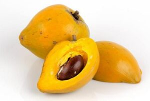 lucuma-fruit