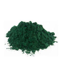 Blue-Green-Algae-img