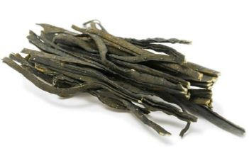 sea spaghetti seaweed