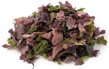 ocean-salad-seaweed