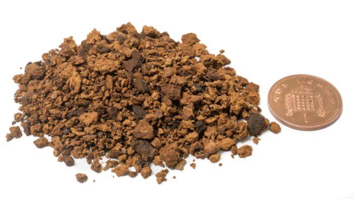chaga-pieces-penny